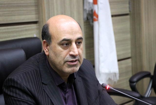 کرمان | اجرای همزمان طرح پازل همدلی در سراسر کشور